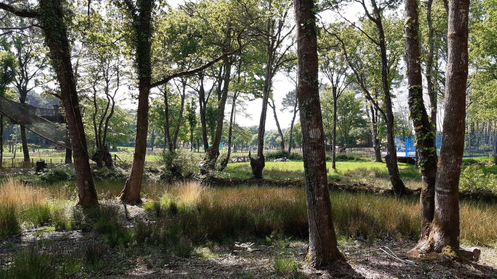 Parc Educatif Enfants Vannes Morbihan